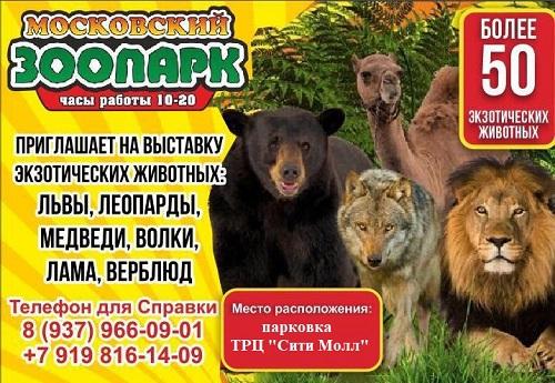 """Выставка животных """"НОЕВ КОВЧЕГ"""""""